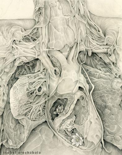 La otra anatomía